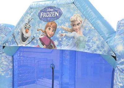 Frozen51